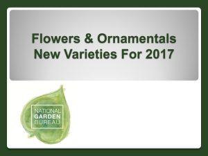 Flowers & Ornamentals New Varieties for 2017