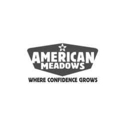 Buy American Meadows Wildflower Seeds