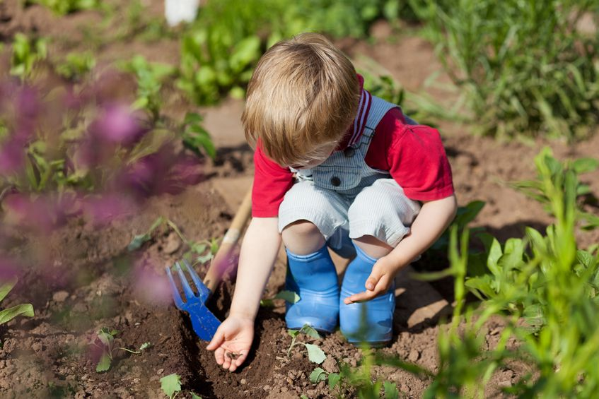 Image result for toddler gardening
