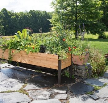 Gardener's Supply Company 2x8 Elevated Cedar Planter Box