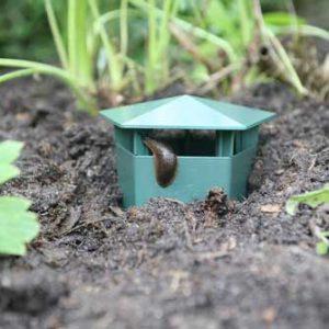 Haxnicks Slug Buster Traps National Garden Bureau