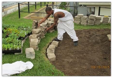 Growing for Futures Therapeutic Garden Grant - National Garden Bureau