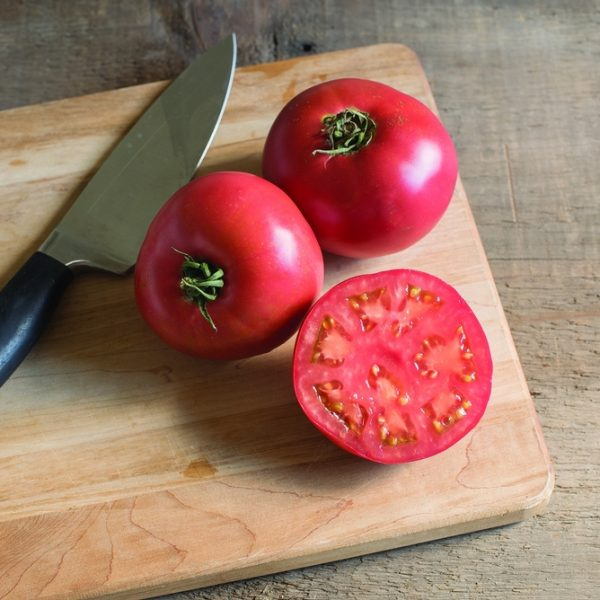 Tomato Damsel