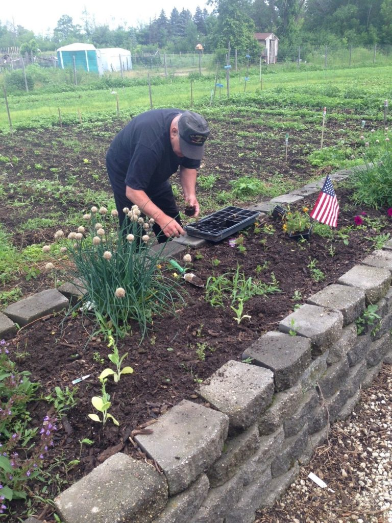 UW Kohl Farm Vets Healing Garden Raised Bed Planting and Garden Photo