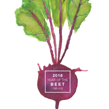2018 Year of the Beet - National Garden Bureau