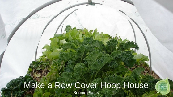 Make a Row Cover Hoop House - National Garden Bureau