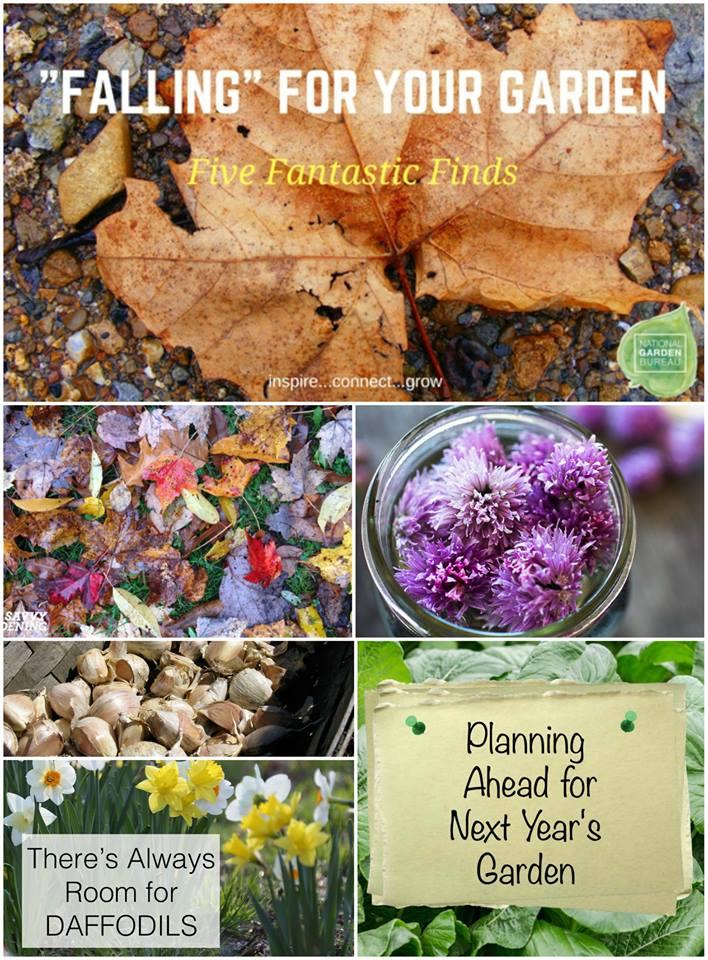 Fall-Inspired from National Garden Bureau