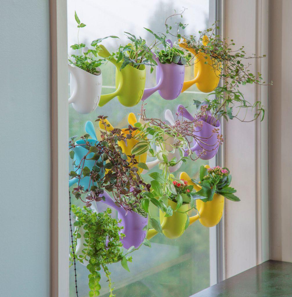 Garden Trends Livi Pot Collection - National Garden Bureau