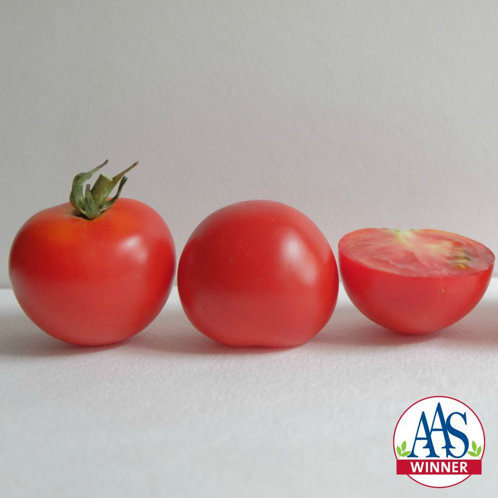 Tomato cocktail Red Racer is a 2018 AAS Winner