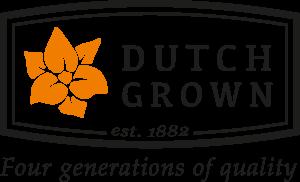Dutch Grown Bulbs
