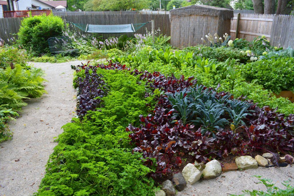 Shawna Cornado Garden