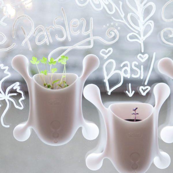 https://gardentherapy.ca/product/window-herb-garden-kit/