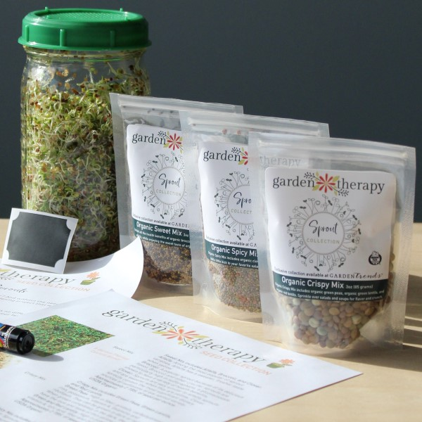LIMITED EDITION: Mason Jar Sprouts Kit