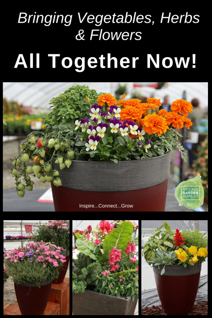 Bringing Vegetables Herbs And Flowers Together In One Container Garden Beautifully
