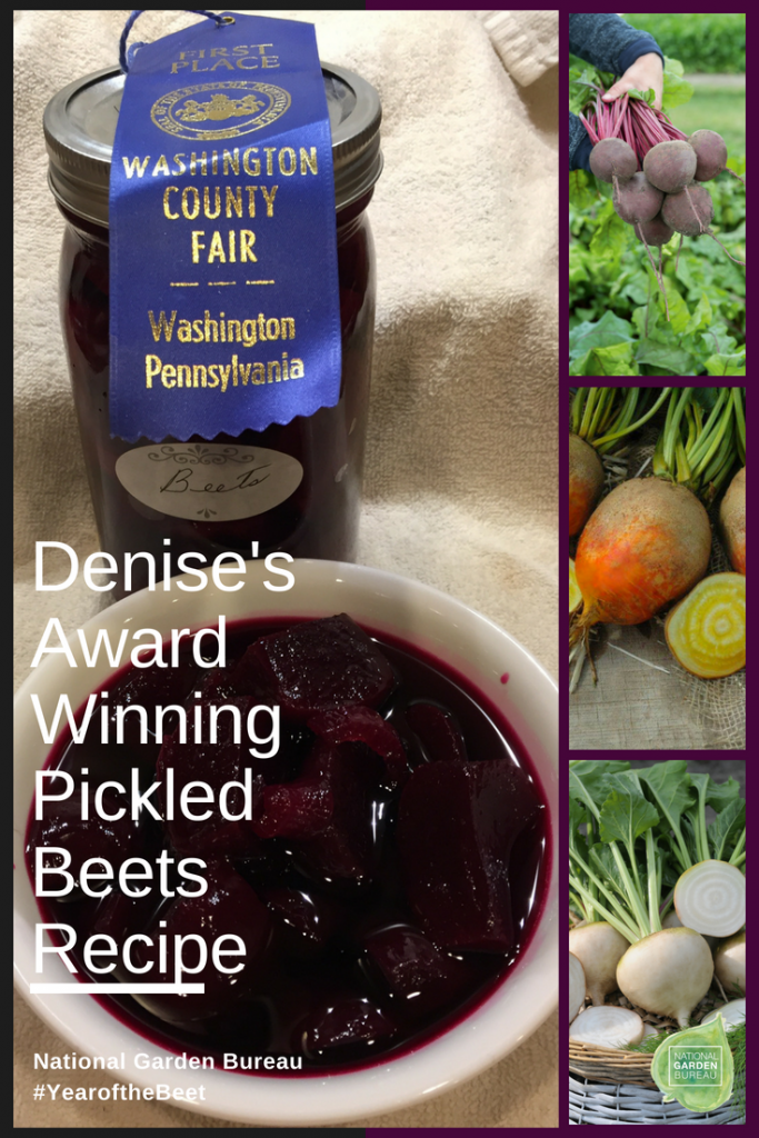 Denise's Award Winning Pickled Beets Recipe - Year of the Beet - National Garden Bureau