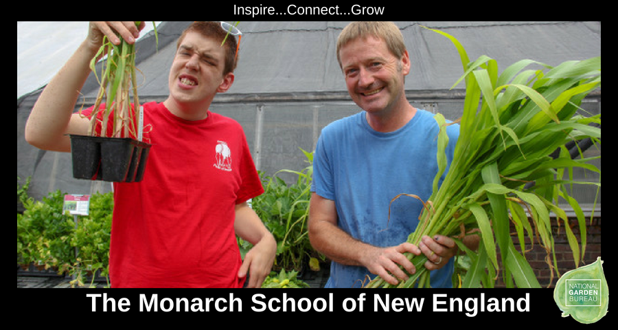 The Monarch School of New England - Therapeutic Garden Winner - National Garden Bureau
