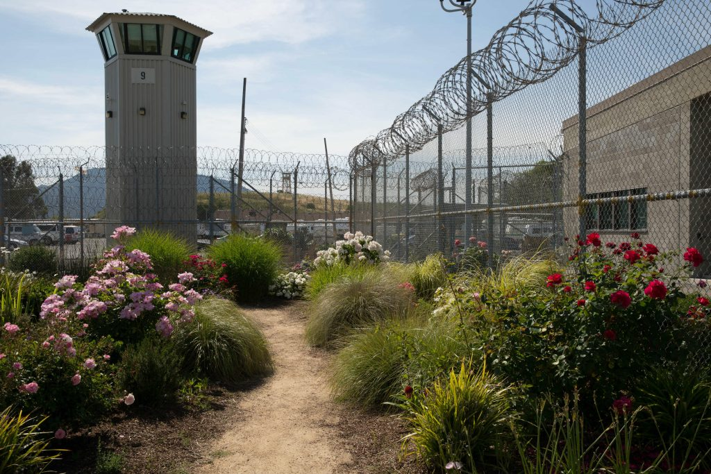 Cultivating Insight Through Gardening at San Quentin Prison