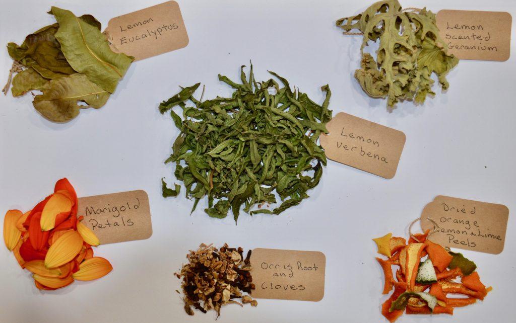 Ingredients for Lovely Lemon Potpourri - National Garden Bureau