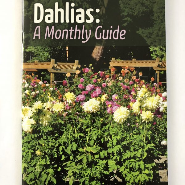 American Dahlia Society new monthly Dahlia Guide