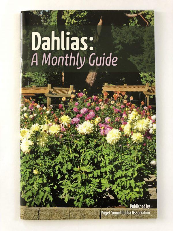 Dahlias: A Monthly Guide