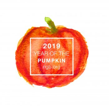 Year of the Pumpkin - National Garden Bureau