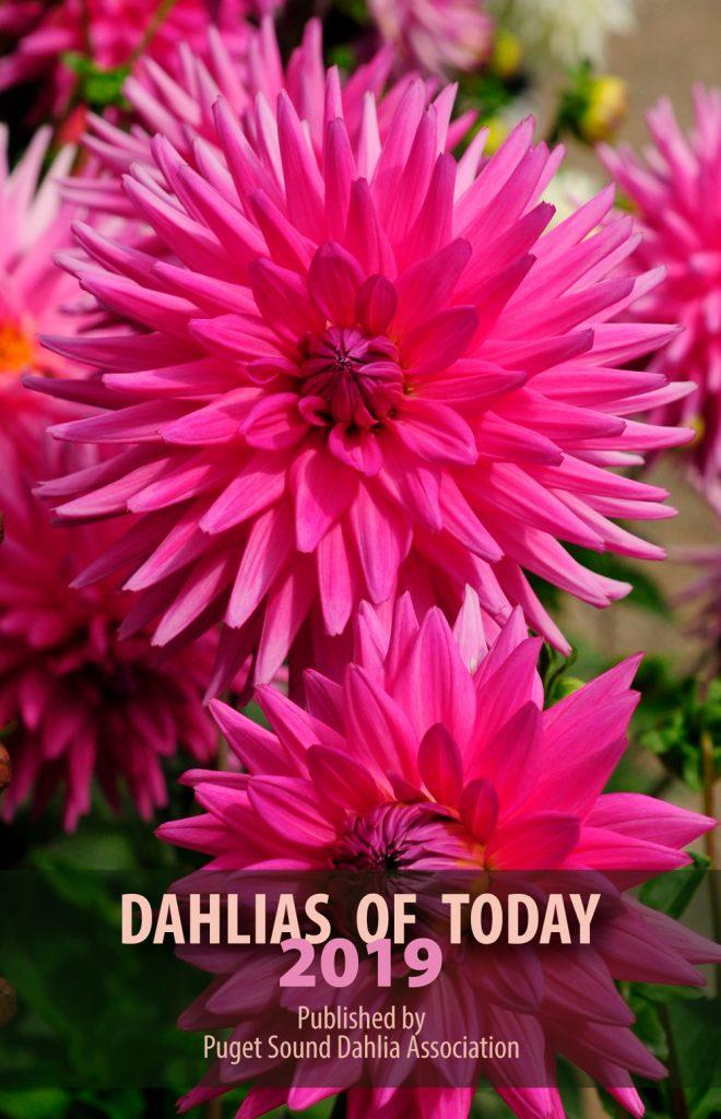 Dahlias for Today 2019 - National Garden Bureau