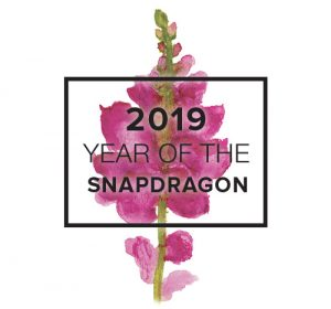 2019 Year of the Snapdragon