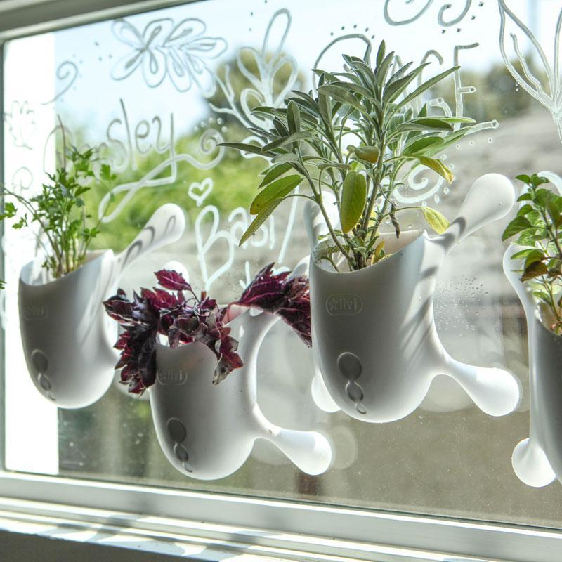 Garden Therapy® Window Herb Garden Kit