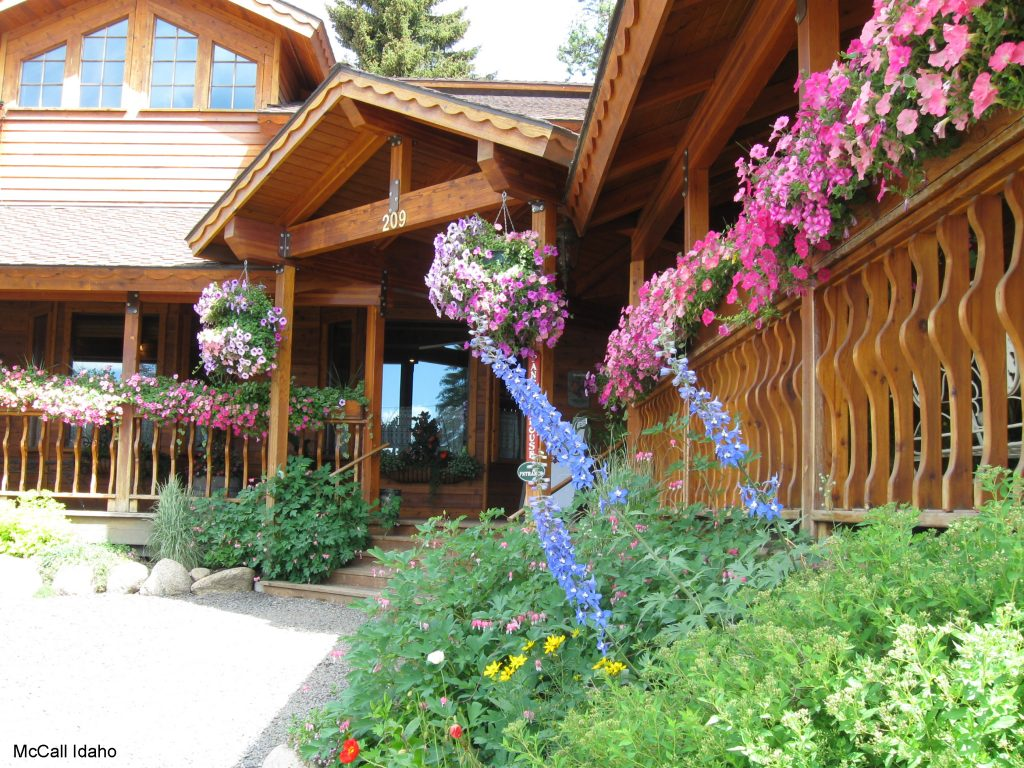 McCall Idaho - National Garden Bureau - Six Reasons Why Plants are More Than Just Pretty