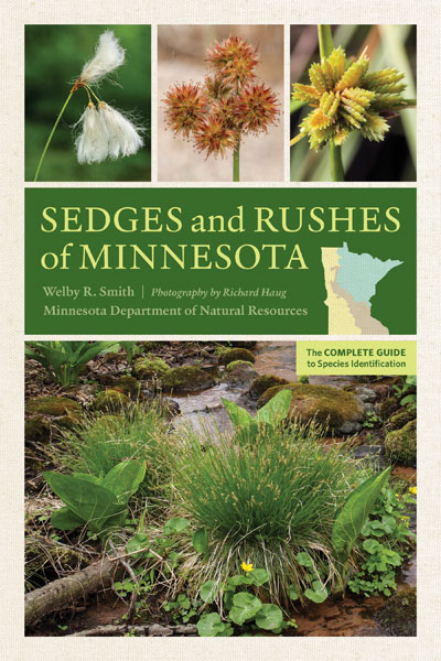 Sedges and Rushes of Minnesota - National Garden Bureau