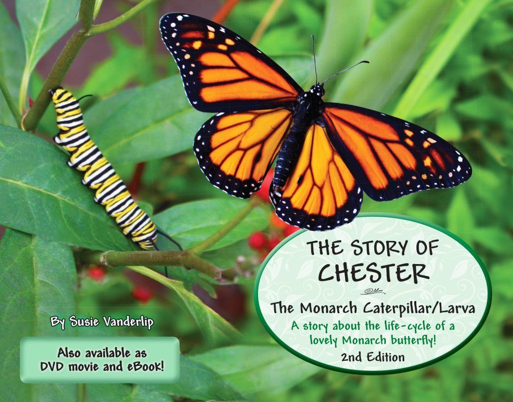 The Story of Chester - The Monarch caterpillar/larva - National Garden Bureau
