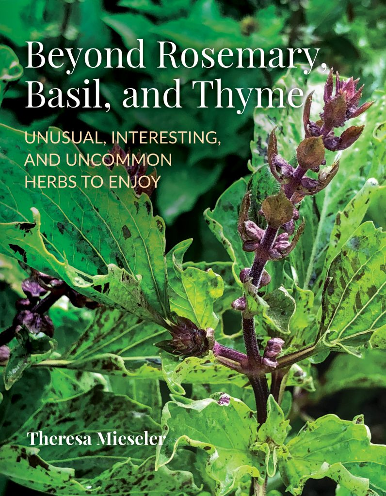 Beyond Rosemary, Basil, and Thyme by Shady Acres Farm - National Garden Bureau