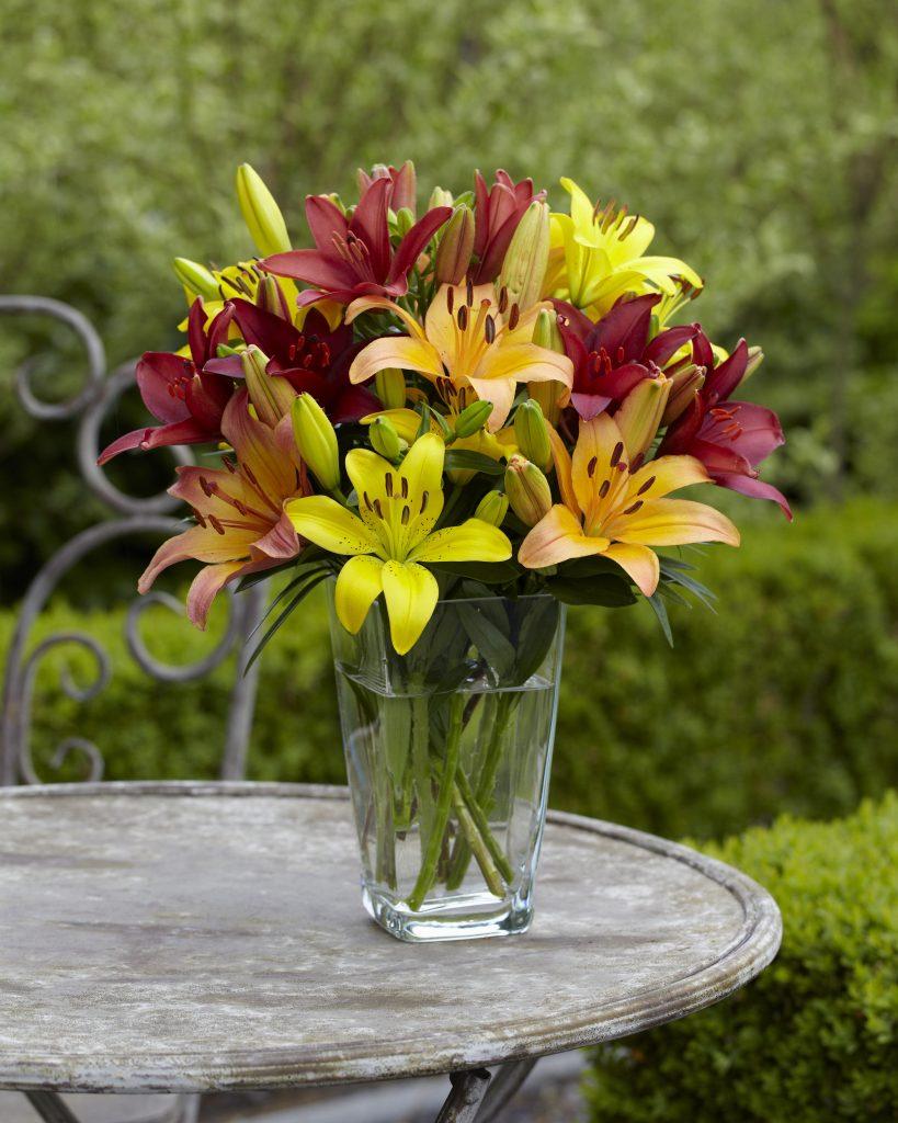The Best Flowers For Homegrown Bouquets National Garden Bureau