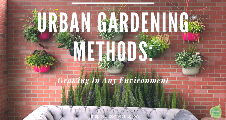 Urban Gardening Methods: Growing in any environment - National Garden Bureau