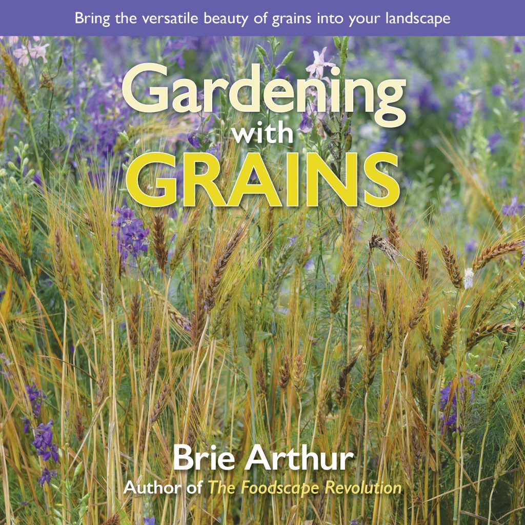 Gardening with Grains - National Garden Bureau