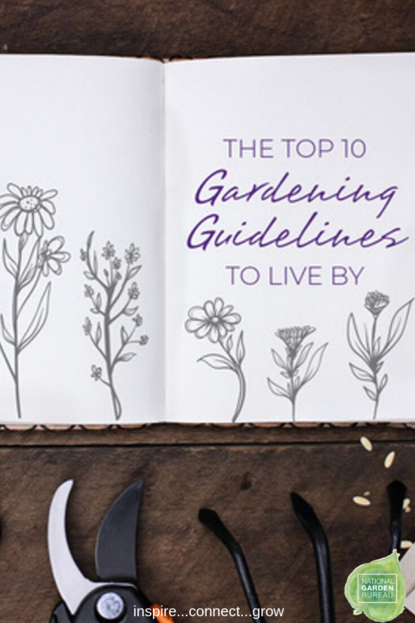 Top 10 Gardening Rules to Live By...Adaptive Gardening for all
