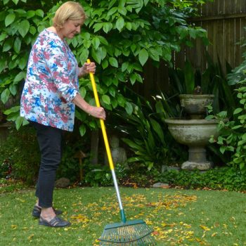 Raking for 30 minutes and then switch the chore for the adaptive gardener - National Garden Bureau