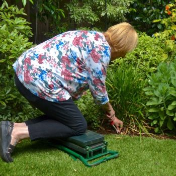 Try a new garden task every 30 minutes to keep your body healthy! Adaptive Gardening - National Garden Bureau