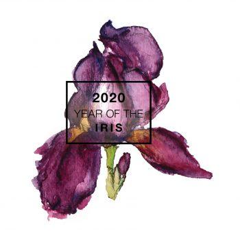 2020 is the Year of the Iris - National Garden Bureau