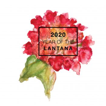 2020 is the Year of the Lantana - National Garden Bureau