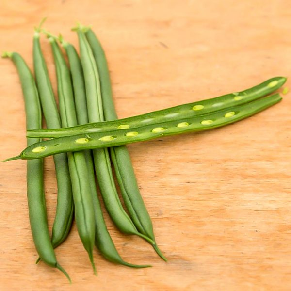 Grow Your Own Green Beads for your Thanksgiving Dinner