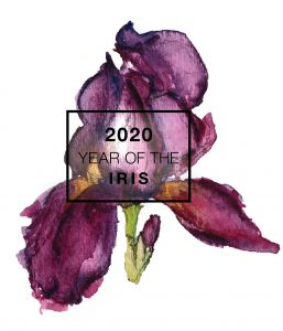 2020 is the Year of the Iris - National Garden Bureau