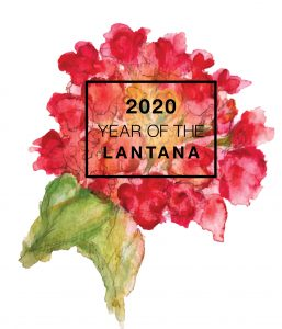 2020 is the Year of the Lantana - National Garden Bureau