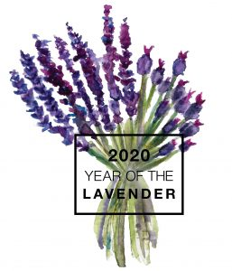 2020 is the Year of the Lavender - National Garden Bureau