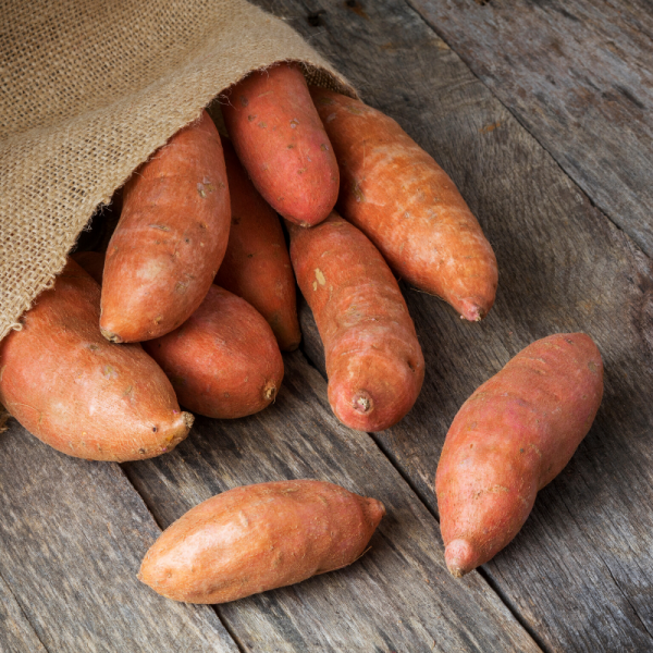 Grow Sweet Potatoes for Your Thanksgiving Dinner