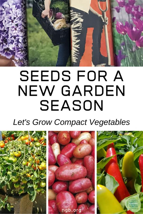 Seeds for a New Garden Season - Let's Grow Compact Vegetables - National Garden Bureau