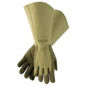Edmund Roses Gloves in Moss - National Garden Bureau