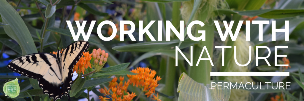 Working with Nature by incorporating Permaculture - National Garden Bureau