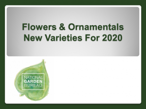 2020 New Flowers & Ornamentals Varieties from NGB members