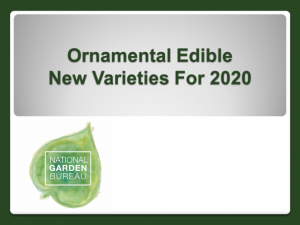 2020 New Ornamental Edible Varieties